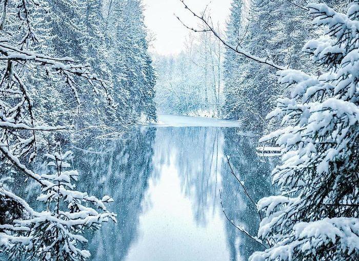 [fotos] Los bosques de Finlandia sonincreíbles