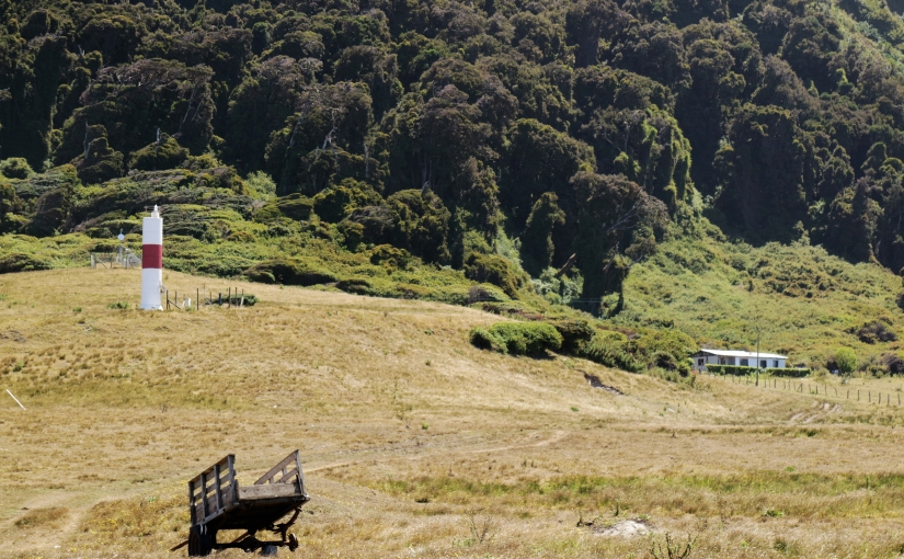 Un buen dato: Isla Mocha Lodge PuntaNorte