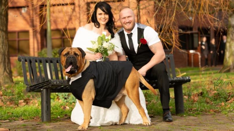 Quiere disfrutar su boda junto a su perro que sufre de una enfermedadterminal