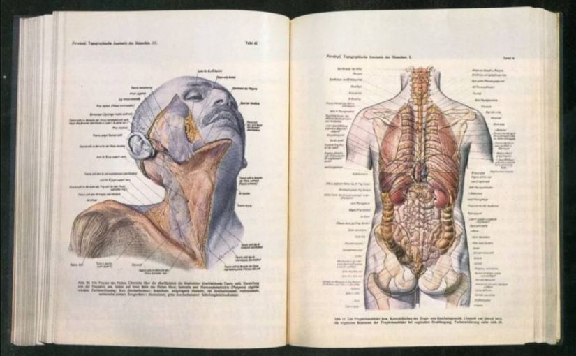 Libro de anatomía Nazi que cirujanos aunutilizan